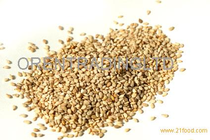 High Purity Natural White Sesame seeds