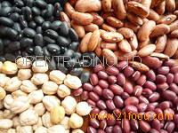 Red/White/Black Dried Kidney Beans
