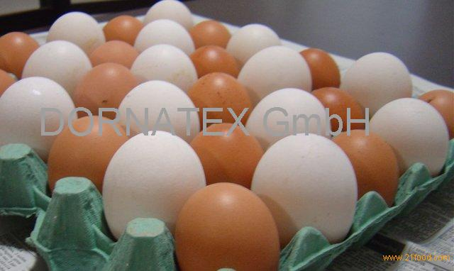 buy/selBest Quality Organic Fresh Chicken Table Eggs & Fertilized Hatching Eggs At Affordable Prices