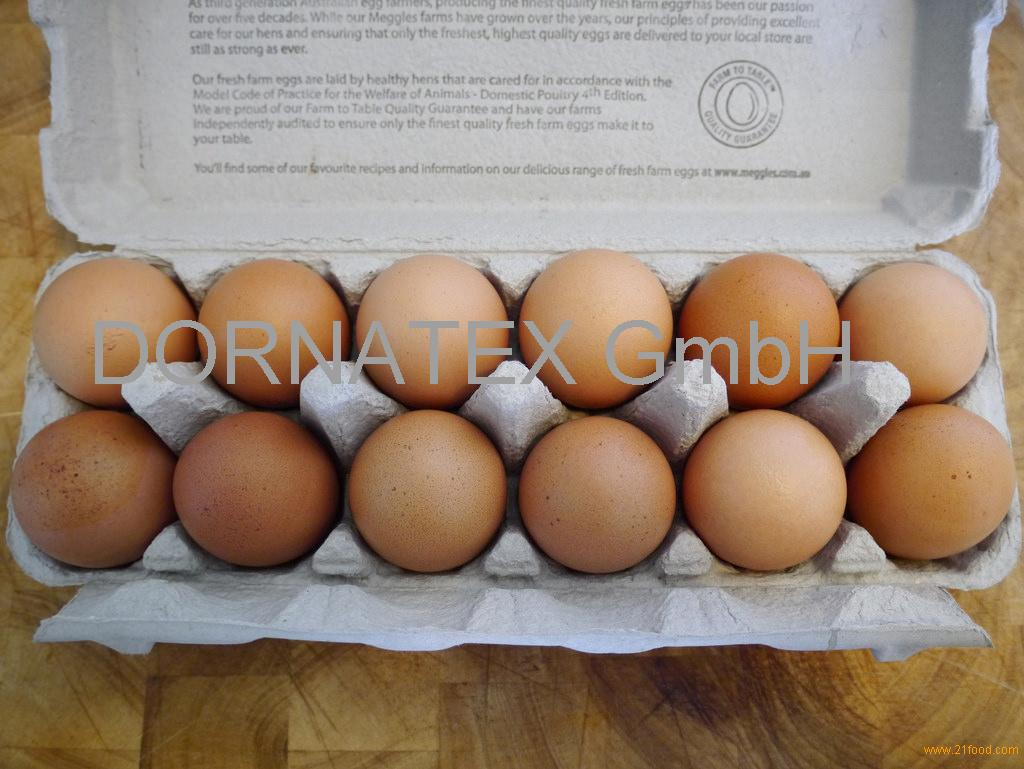 sell Chicken white Table Egg with Golden Yellow Yoke