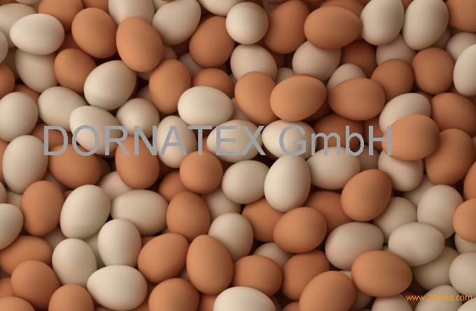 FARM FRESH CHICKEN TABLE EGGS FERTILE/ HATCHING CHICKEN EGG/ BROILER CHICKEN EGGS........
