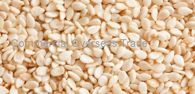 White / Brown / Black Hulled and Natural Sesame seeds on 30% Discount