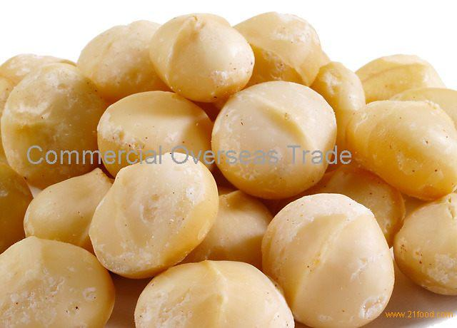 Raw Macadamia Nuts, Roasted Macadamia Nuts now available for sale