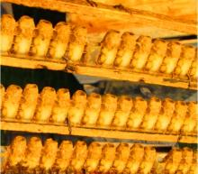 Best sales fresh royal jelly