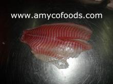 Tilapia fish fresh frozen for Russia