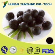 Natural Fruit Extract Antioxidant Acai Berry Extract 25% Anthocyanin