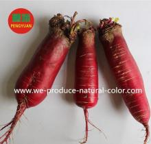 natural color beet root red