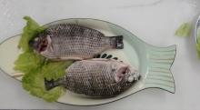 Tilapia Whole Clean