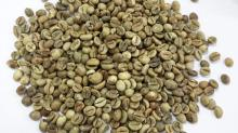 Dried Coffee Bean/ Cafe Bean/ Robusta & Arabica