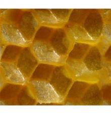 Top sale beeswax comb foundation from Turkey