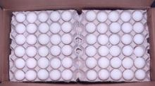 Grade A White Chicken Eggs for sale