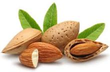 Copy of Raw Natural Almond Nuts for Sale