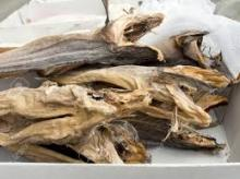 STOCKFISH - DRIED WHOLE FISH - ICELANDIC - COD/TUSK/SKATE