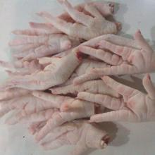 Best Grade A frozen chicken feet
