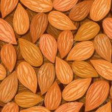 Raw Almonds Nuts, delicious and healthy Raw Almonds Nuts Almond/Apricot Kernels