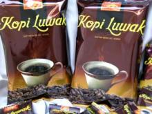 Coffee luwak robusta