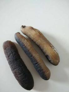 Sea Cucumbers / Dried Sea Cucumbers / dried seafood / Spiny Sea Cucumbers