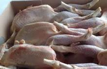 .Quality Halal Frozen Whole Chicken and Parts Gizzards / .Thighs / Feet / Paws Drumsticks