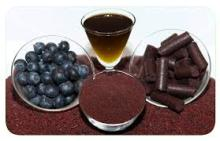 Blueberry Seed Oil/ Blueberry Fruit Seeds/ Blueberry Fruit Fiber