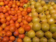 Fresh Citrus Fruits, Orange, Mamdarin, Clementine
