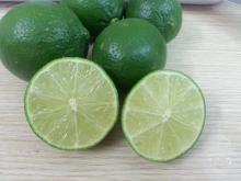 SEEDLESS LIME - HOT SALE - CHEAP PRICE