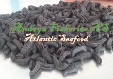 Best Dry Sea cucumber no chemical use