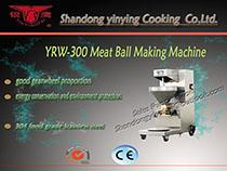 YRW-300I ball machine