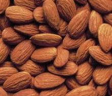 Bitter Almonds/ Almond nut/ Almonds kernel Abailable