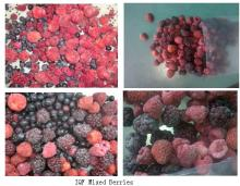 IQF Mixed Berries Products In Frozen Fruits