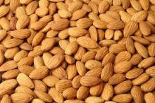 Best Quality Organic Bitter Almonds / Raw Natural Almond Nuts / Roasted Almond Nuts