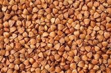 Hot sale raw Sweet Buckwheat for sale