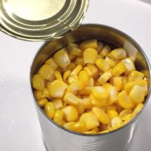 Canned Sweet Corn Kernel