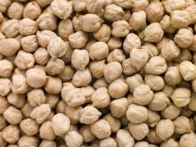 Grade 'A' Quality Kabuli Chickpeas For Sale