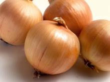High Quality Fresh Onions