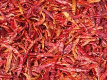 Dried Chilli (stem/ stemless)