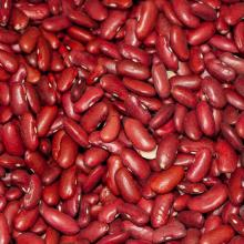 Red Kidney Beans Long Shape