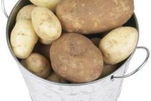 /Chinese Fresh/ holland potato hot for sale/