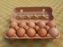 Grade A Fresh Chicken Table Eggs