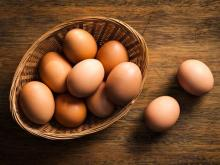 sell Farm Fresh Chicken Table Eggs Brown and White Shell Chicken Eggs