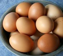 ...Fresh Brown And White Shell Chicken Eggs From South Africa