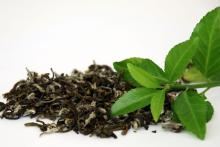 Healthy Drinking Fresh Organic Green Tea