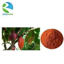 Hot sale natural cocoa seed extract powder