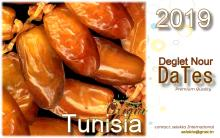 Fresh Deglet Nour dates of Tunisia premium quality