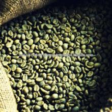 robusta green coffee beans,new crop,washed,polished grade A,screen 16