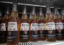 Corona Extra Beer 355ml Bottle and Can//