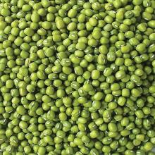 High Quality New Crop Bulk Green Mung Beans