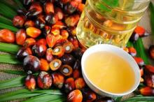 --March shortening palm oil