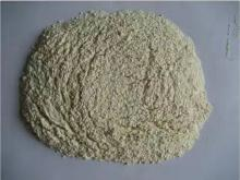 Garlic powder 100-120mesh