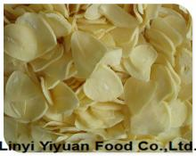 Shandong Manufacturer new crops natural dried dehydrated garlic flakes wholesale