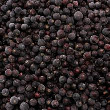 IQF Blackcurrants on sale, 30% discount